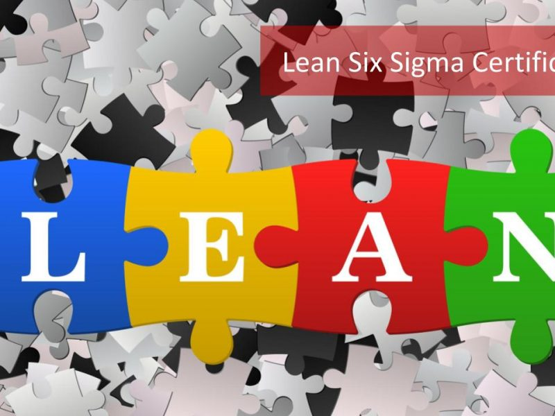 Why Should You Opt For A Six Sigma Certification?